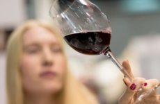 Эксперт растолковал, почему в РФ планируется повышение акцизы на вино, а не на водку