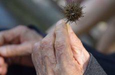 Стали известны продукты, ускоряющие старение