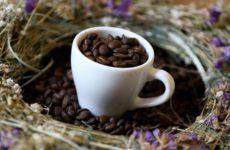 Эксперты раскрыли последствия ежедневного употребления кофе