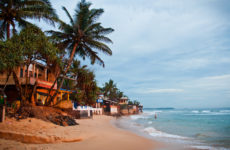 Шри-Ланка начнёт выдавать россиянам бесплатные визы