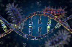 Ученые обнаружили уязвимое место многих типов рака