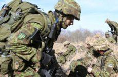 Военный эксперт сравнил Эстонию с «клопом» из-за дискуссий о беспомощности альянса