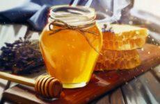 Врачи сообщил о безопасном для здоровья количестве меда