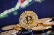 Биткоин поставил новый рекорд. Что ожидает курс криптовалюты