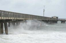 Ураган вынес на пляжи Флориды более 15 брикетов кокаина