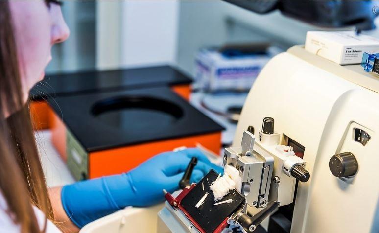 Эксперты выявили 3 молочных продукта, вызывающих рак простаты 1