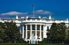Мышь рухнула с потолка в Белом доме прямо на колени репортеру