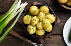 Стала известна доступная пища с высоким содержанием белка для замены мяса
