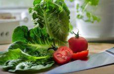 Ученые узнали, что вегетарианцы чаще подвержены инсультам, чем мясоеды
