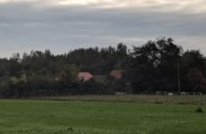 В Нидерландах обнаружили семью, которую отец прятал в подвале дома девять лет