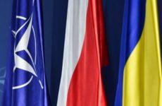 В Сети отреагировали на поедание бандеровского флага украинцем в Варшаве