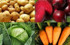 Диетолог поведал о правильном питании осенью