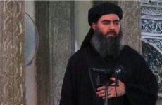 Эксперт рассказал, почему заявление США о «ликвидации» в Сирии аль-Багдади является фейком
