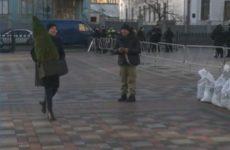 Савченко насыпала земли у стен Рады и поставила ёлку — видео