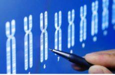 Американские генетики создали новый инструмент для борьбы с раком