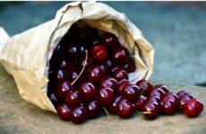 Канадские ученые озвучили неожиданную пользу вишни для здоровья