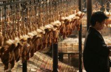 Коронавирус: в Поднебесной запретили торговать мясом диких животных