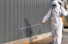 Власти Марокко заявили о первом случае заражения новым типом коронавируса