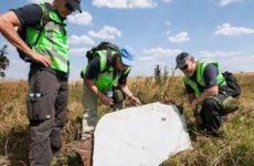 Нидерланды планировали отправить войска в Донбасс после крушения MH17