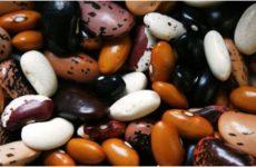 Диетологи назвали полезные продукты, способные заменить мясо