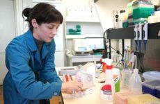 В Штатах оценили российский препарат от коронавируса