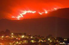 Ученые предсказывают новые катастрофичные пожары по всему миру