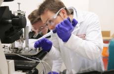 Встряхнуть и охладить: инженеры предложили новый способ лечения сотрясения мозга