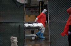Жители округа Нью-Йорка подали на ВОЗ в суд из-за халатности в борьбе с коронавирусом