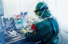 Британские ученые рассказали о «чудо-средстве» от коронавируса
