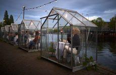 В Нидерландах 1 июня открываются рестораны, бары, театры и кинотеатры