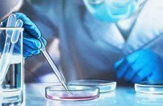 Итальянские ученые опровергли устоявшийся миф о коронавирусе
