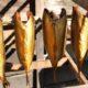 Эксперт рассказал, где не следует покупать рыбу горячего копчения