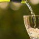 Диетолог рассказала о снижающем холестерин алкоголе