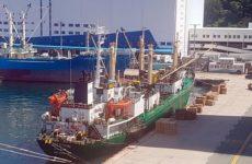 Коронавирус выявлен у 32 моряков российского судна в Пусане