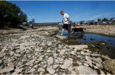 N-TV: из-за жары и засухи в регионах Германии не хватает питьевой воды