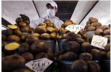 Названы самые вредные блюда из картофеля