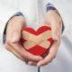 Ученые нашли способ омоложения органов от пожилых доноров