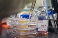 Бессимптомное протекание коронавируса объяснили проблемами с иммунитетом