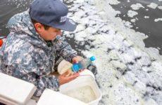 Мусор и ядерные отходы: Экокатастрофа на Камчатке. Где еще может полыхнуть?