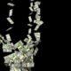 Доллару предсказали обвал на фоне грядущей гражданской войны в США