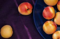 Диабетикам назвали фрукты для нормализации сахара в крови