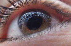 В Нидерландах придумали способ вернуть зрение ослепшим людям