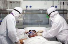 Биолог рассказала об опасности потери обоняния при COVID-19 для мозга
