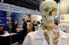 Ученые нашли новый способ быстрого заживления костей