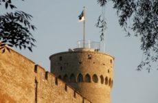 Эстония пытается отгородиться от России забором с колючей проволокой