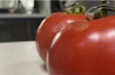 Японские власти одобрили продажу ГМО-продуктов