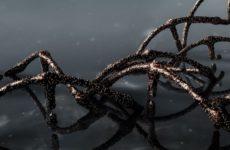 Американские ученые обнаружили слабое место коронавируса