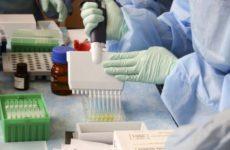 Ученые опубликовали руководство по лечению постковидного синдрома
