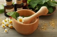 Названы лучшие травы для чая при борьбе с коронавирусом