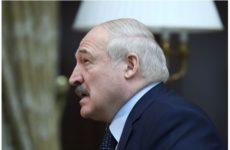 Лукашенко заявил о непереносимости алкоголя